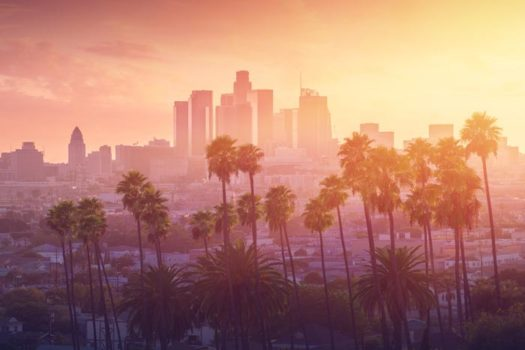 California sunset with palm trees and city in background